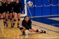 Volleyball _DSC6463.jpg