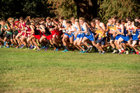 SBHS Cross Country  201509092.jpg