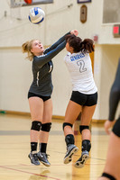 volleyball _DSC1807.jpg